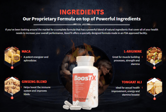 boostx ingredients