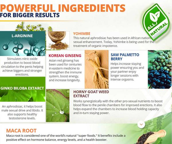 zynev Ingredients